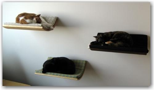 un lit design pour chat lire. Black Bedroom Furniture Sets. Home Design Ideas