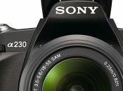 nouveaux reflex Sony alpha