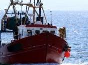Grenelle trois syndicats s'engagent pour pêche plus écologique