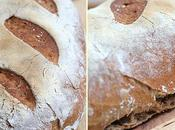 Pain campagne farines