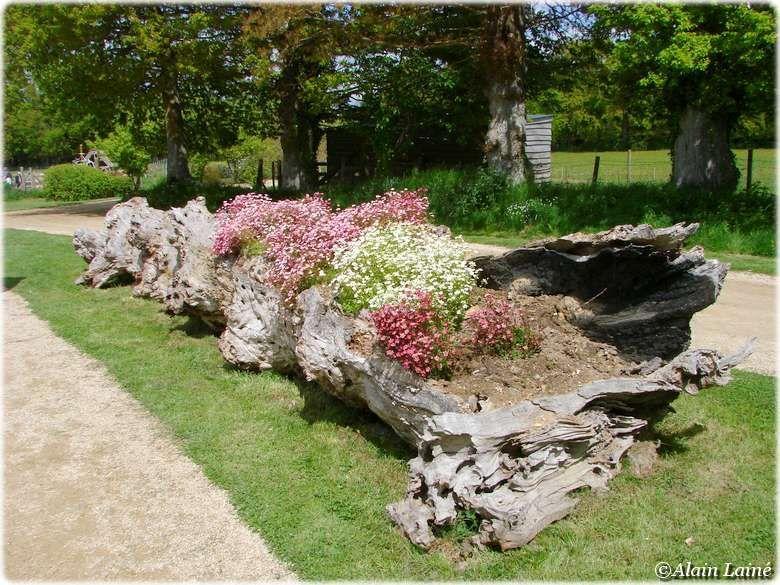 jardins de broc liande br al sous montfort bretagne 1 6 paperblog. Black Bedroom Furniture Sets. Home Design Ideas