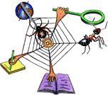 Mathématiques et premier emploi