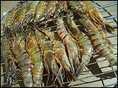 Gambas grill es au bbq et sirop d 39 erable paperblog - Marinade gambas grillees au barbecue ...