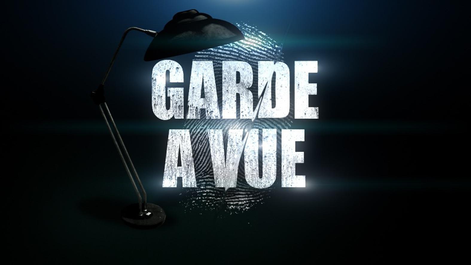 http://media.paperblog.fr/i/203/2031529/garde-vue-L-2.jpeg