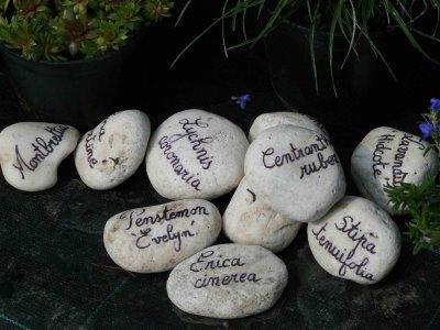 Une bonne id e les tiquettes de jardin galet d couvrir - Etiquette jardin ...