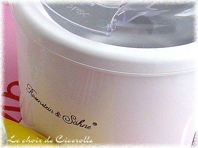 Glace la myrtille sans oeuf ni lactose dans petite sorbeti re pas ch re - Sorbetiere pas chere ...