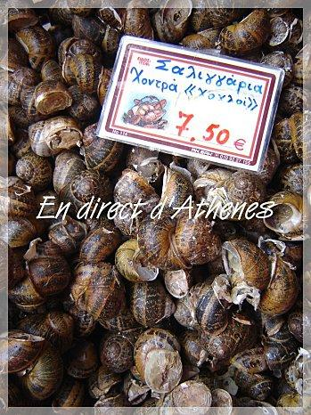 RETOUR DU MARCHE CRETOIS : Les escargots