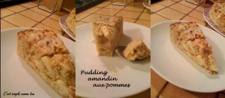 pudding_amandin_aux_pommes_14