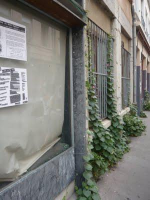 Végétalisation interventionniste à Lyon