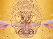 L'icône folk Devendra Banhart nouvel album octobre Warner