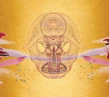 L'icône folk Devendra Banhart : nouvel album en octobre sur Warner