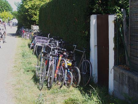 PISTE_CYCLABLE_MARCHE_ANDERNOS_AOUT_2009__2_