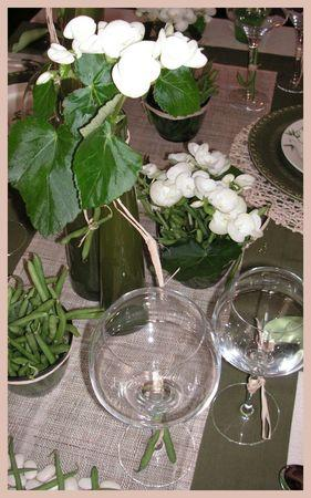 2009_08_01_table_haricots11