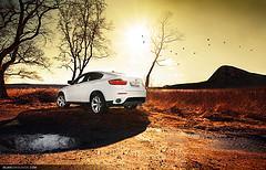BMW X6 - African Safari