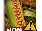 Maïs SmartStax super profit pour Monsanto