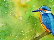 Oiseaux Martin Pêcheur