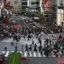 carrefour très fréquenté japon