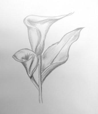 Dessin de arome fleur en tatouage tatouage - Fleur tatouage dessin ...