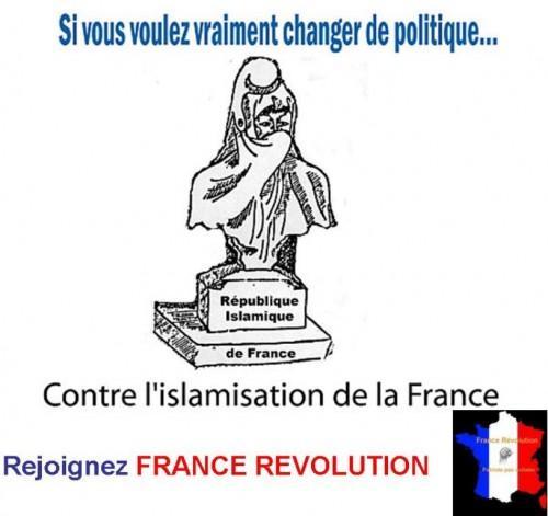 Rejoignez FRANCE REVOLUTION.jpg