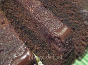 Moelleux Chocolat Rapide Léger