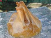 Compotée pommes caramélisées cannelle aumônière brick