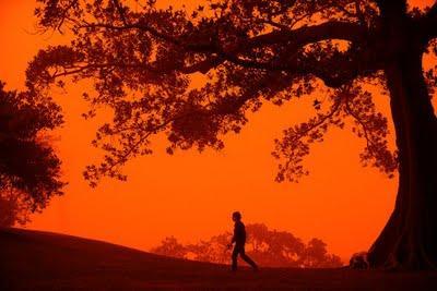 tempête de poussiére en Australie .