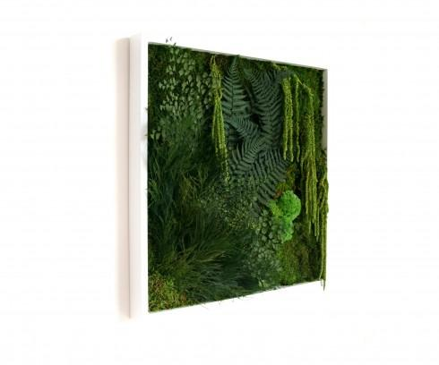 tableau végétal matigreen