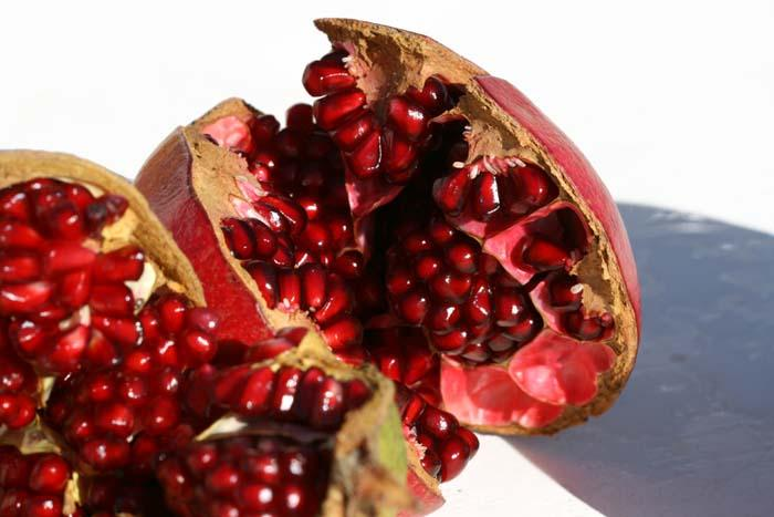 Punica granatum pomegranate romã grenade
