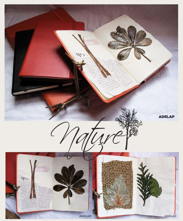 [ADELAP-nature.jpg]