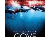 cove, massacre dauphins