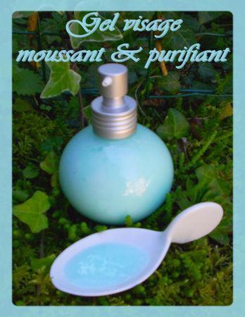 Gel_visage_moussant___purifiant