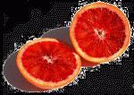 orange.gif