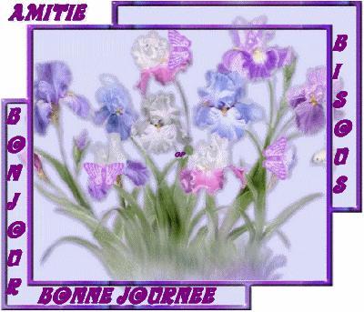 http://mimi1402.m.i.pic.centerblog.net/tkg0rap4.gif