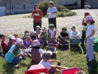 Sortie vendange à Mirebeau pour une maternelle de Martillac