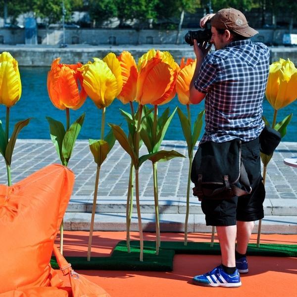 Pêle-Mêle: EasyJet, Tricoter Ensemble, Tulipes.....