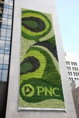 PNC-mur-vegetal-1.jpg
