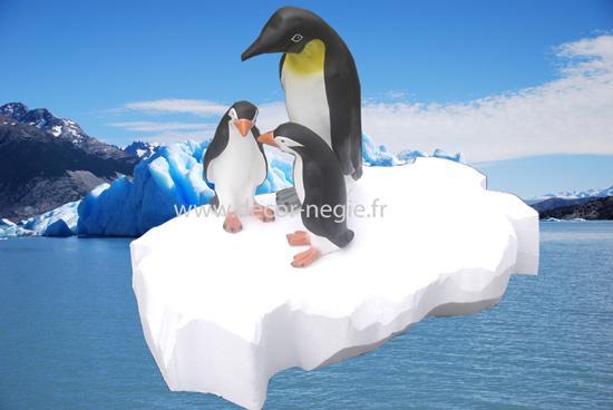Eléments de décor neige hiver : petite banquise
