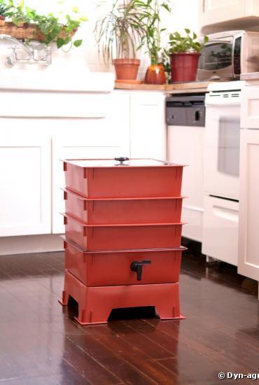 Lombri-compostage : des vers pour recycler ses déchets !