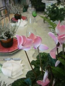 Table-au-jardin-d-eden