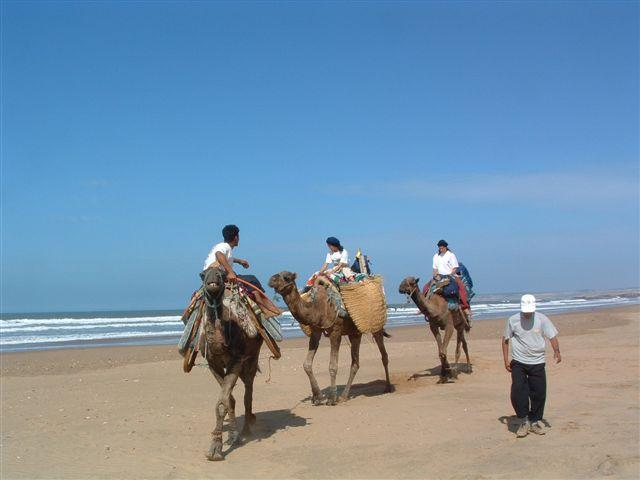 http://www.echaillon.com/images/sejours/maroc-essaouira-4.JPG