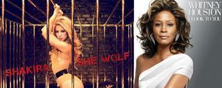 Shakira et Whitney Houston sur Canal +