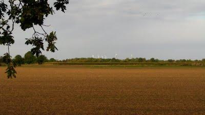 Derniers Lambeaux de Niedersachsen