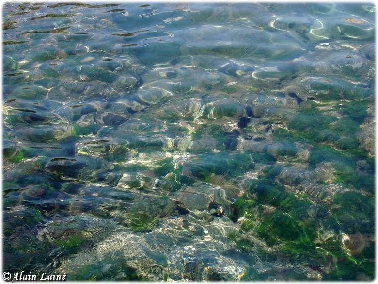Collioure09_35