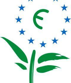 L'écologie sauvera-t-elle l'Europe?