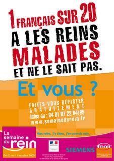 1 français sur 20 a les reins malades et ne le sait pas : et vous ?