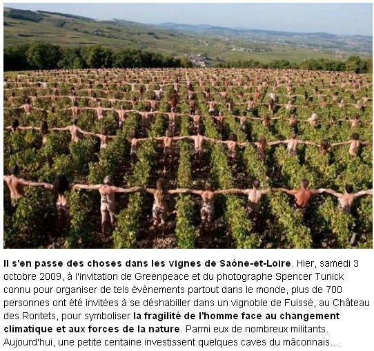 les-vignes.1254682977.jpg