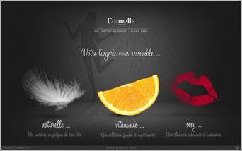Les humeurs de la lingerie by Cannelle Lingerie