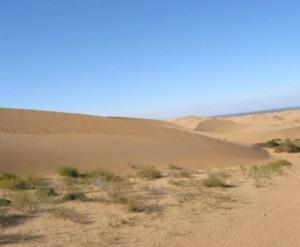 désert de Gobi-Mongolie