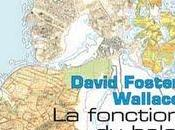 fonction balai, David Foster Wallace