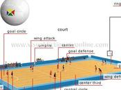Basic-Volley Bercy